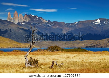 Torres del Paine National Park, Laguna Azul, Patagonia, Chile - stock photo