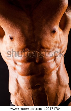 torso of young muscular man