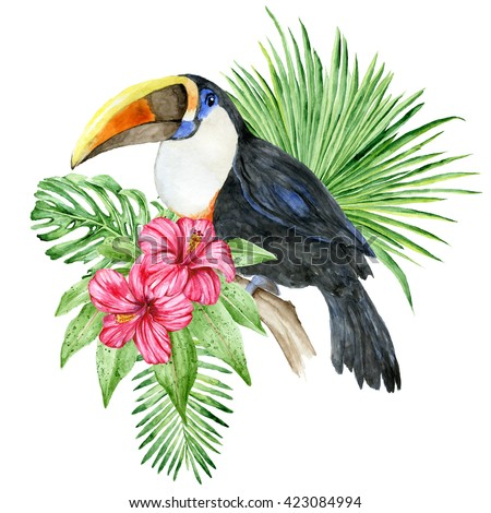 Toucan bird and hibiscus flowers. Watercolor illustration - stock photo