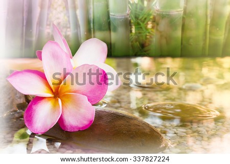 Touching nature with relaxing and peaceful with flower plumeria or frangipani decorated on water and pebble rock in zen style for spa meditation mood background - stock photo