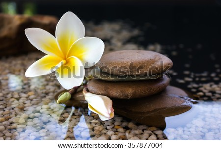 Touching nature with relaxing and peaceful with flower plumeria or frangipani decorated on water and pebble rock in zen style for spa meditation mood - stock photo