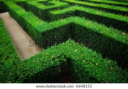 Tough problem - a garden labyrinth