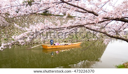 Tourism cruising watch sakura blossoms on the boat at Himeji Castle, Japan
