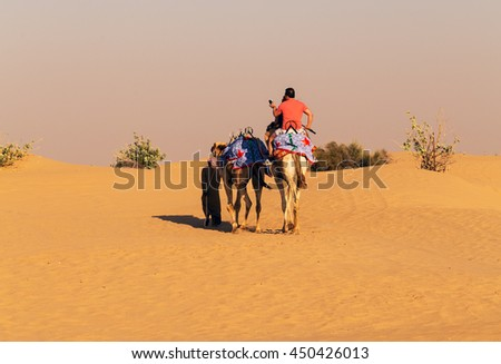 Tourist camel safari dunes on the desert