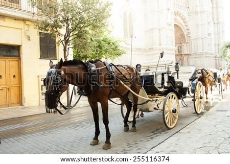 Tourist chariot in the old city of Palma de Mallorca - stock photo