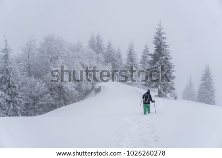Tourist hiking in snowy winter misty forest
