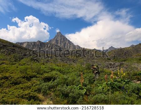 Tourist on the alpine meadow. TUNKA ridge. Sayan mountains. Republic of Buryatia - stock photo