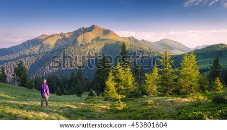 Tourist stands on a hillside. European man in a purple jacket. Summer landscape in sunny weather. Panoramic shot of the mountains and spruce forest. Karpaty, Ukraine, Europe