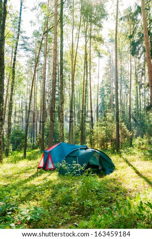 Tourist tent in a forest, morning at sunrise - stock photo