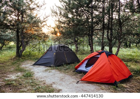 Tourist tents in green pine forest with sunbeams at campsite. Camping in nature park in summer. Adventure travel active lifestyle freedom outdoors. Sunlight rays shining through the trees. - stock photo