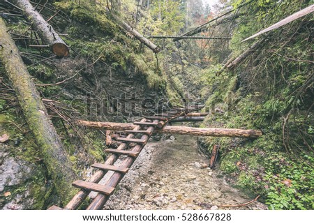 tourist trail in misty woods with boardwalks and rocks for climbing - vintage retro look