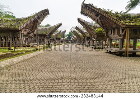 Tourist visiting traditional village with typical boat shaped roofs in Tana Toraja, South Sulawesi, Indonesia. Wide angle shot, panoramic view. - stock photo