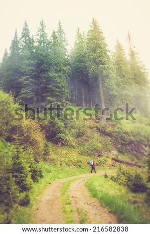 Tourist with backpack walking along on the road in fog in mountains. Filtered image:cross processed vintage effect.  - stock photo