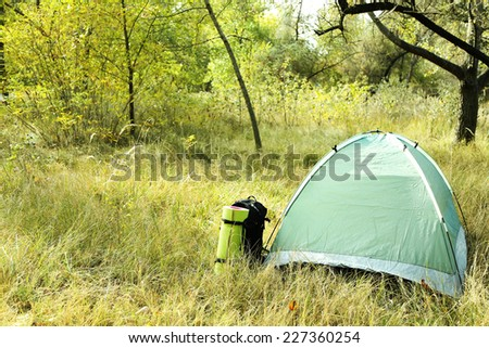 Touristic tent on dried grass in a forest - stock photo