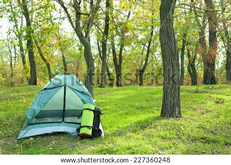 Touristic tent on green grass in a forest - stock photo
