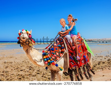 Tourists children riding camel  on the beach of  Egypt. Blue sky. - stock photo