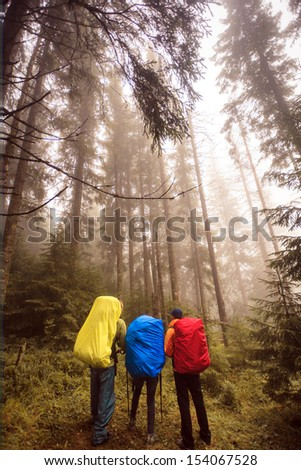 Tourists in colorful raincoats and misty forest - stock photo