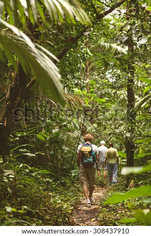 tourists in the jungle