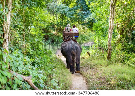 Tourists ride on elephant in forest, located in Chiang mai, thailand. - stock photo