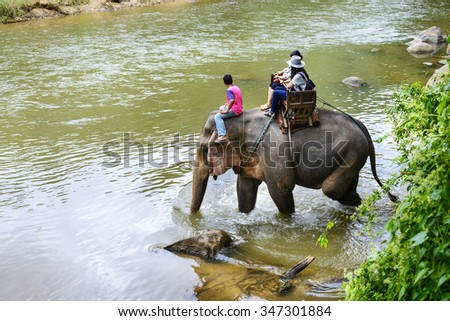 Tourists ride on elephant in river, located in Chiang mai, thailand. - stock photo