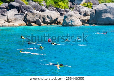 Tourists snorkling at Similan Koh Similan No.8 Island in Similan national park, and discovering plenty of fishes and corals. - stock photo