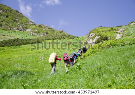 Tourists with backpacks on climbing the summer hill. Ukraine, Marmarosi