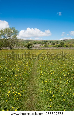 Towards Askrigg through the meadows in the Yorkshire Dales - stock photo