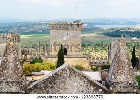 Tower of Almodovar Del Rio medieval castle in Spain - stock photo