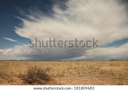Towering cloud looms sideways over landscape of semi-desert grasslands in  winter/Huge Looming Cumulus Cloud over Winter Dry Grass Landscape/Huge mass of gray and white cloud with blue sky