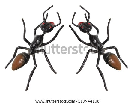 Toy Ants on White Background