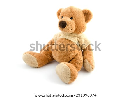toy brown bear isolated on white - stock photo