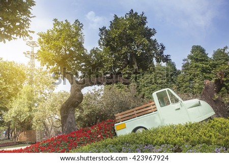 toy car in flower garden