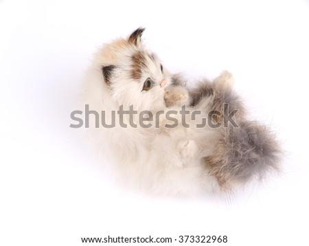 toy kitten on a white background - stock photo