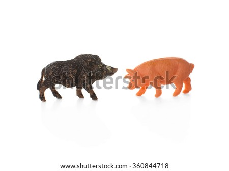 toy pig and wild boar. plastic miniature figurines of domestic pigs and wild boar isolated on white background - stock photo