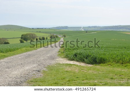 Track across The South Downs above Steyning near Worthing, West Sussex, England