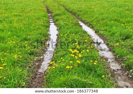 Track in wet ground - stock photo
