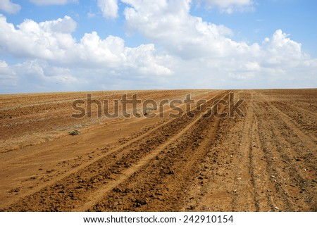 Track on the plowed land in Israel