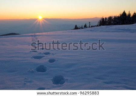 tracks in the snow and sunset - stock photo