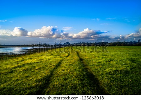 Tracks into the distance in a grass field at sunset, heading toward dramatic clouds in the distance - stock photo
