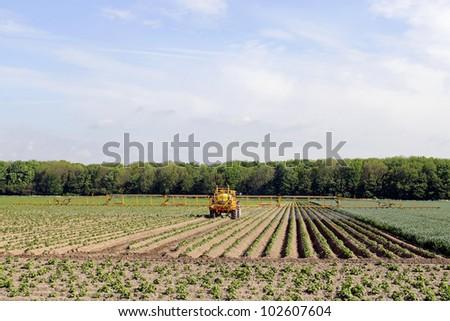 Tractor fertilizes crops - stock photo