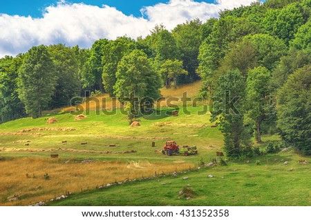 Tractor harvests of dry hay in the mountainous terrain on a sunny day. Durmitor, Montenegro. - stock photo
