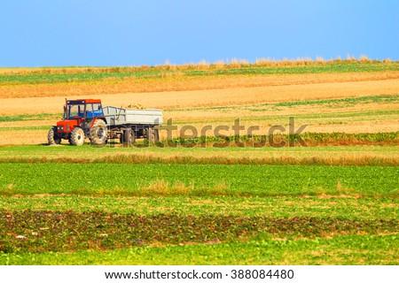 Tractor in a farmer field. - stock photo