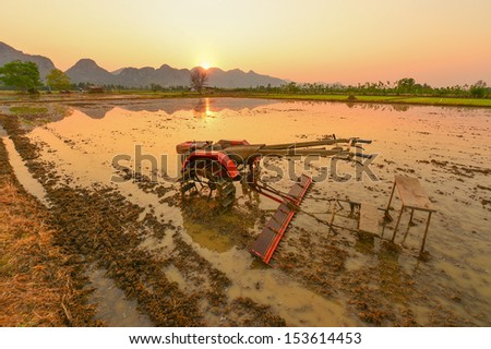 Tractor in rice farm.