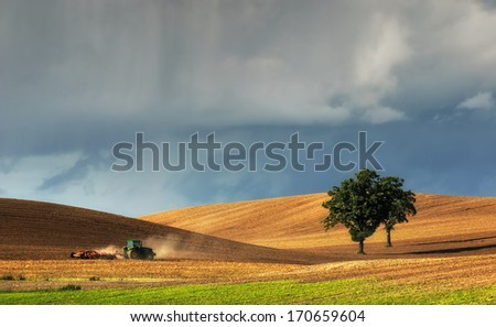 Tractor plows a field in the spring accompanied by rooks Tractor  - stock photo