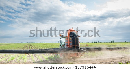 Tractor spraying corn in the spring - stock photo