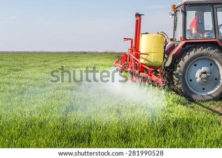 Tractor spraying wheat field with sprayer - stock photo
