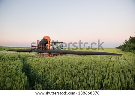 Tractor spraying wheat in the spring - stock photo