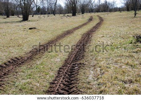 Tractor tracks in a meadow at spring season