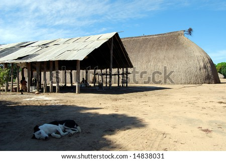 Traditional Amazon Indian house and canopy for food preparation, dog resting in shade