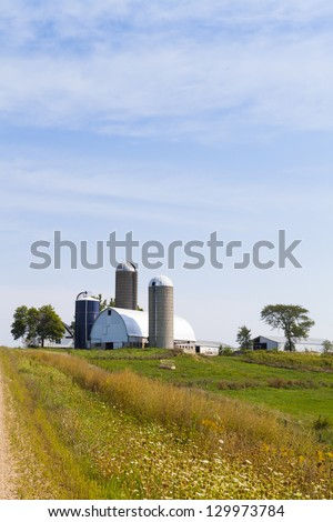 Traditional American White Farm in Summer - stock photo